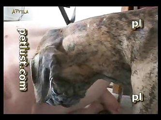 Zoo Gay Petlust M16 4 Bb14 Big Knot (part 2)
