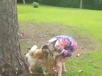 Dog Piss XXX