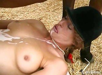 Horse Play Xxx