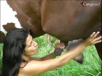 Dandole horse A La Culona De Mi Vecina