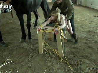 конь ебёт россию