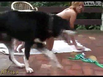0c81d2 Aline Dog
